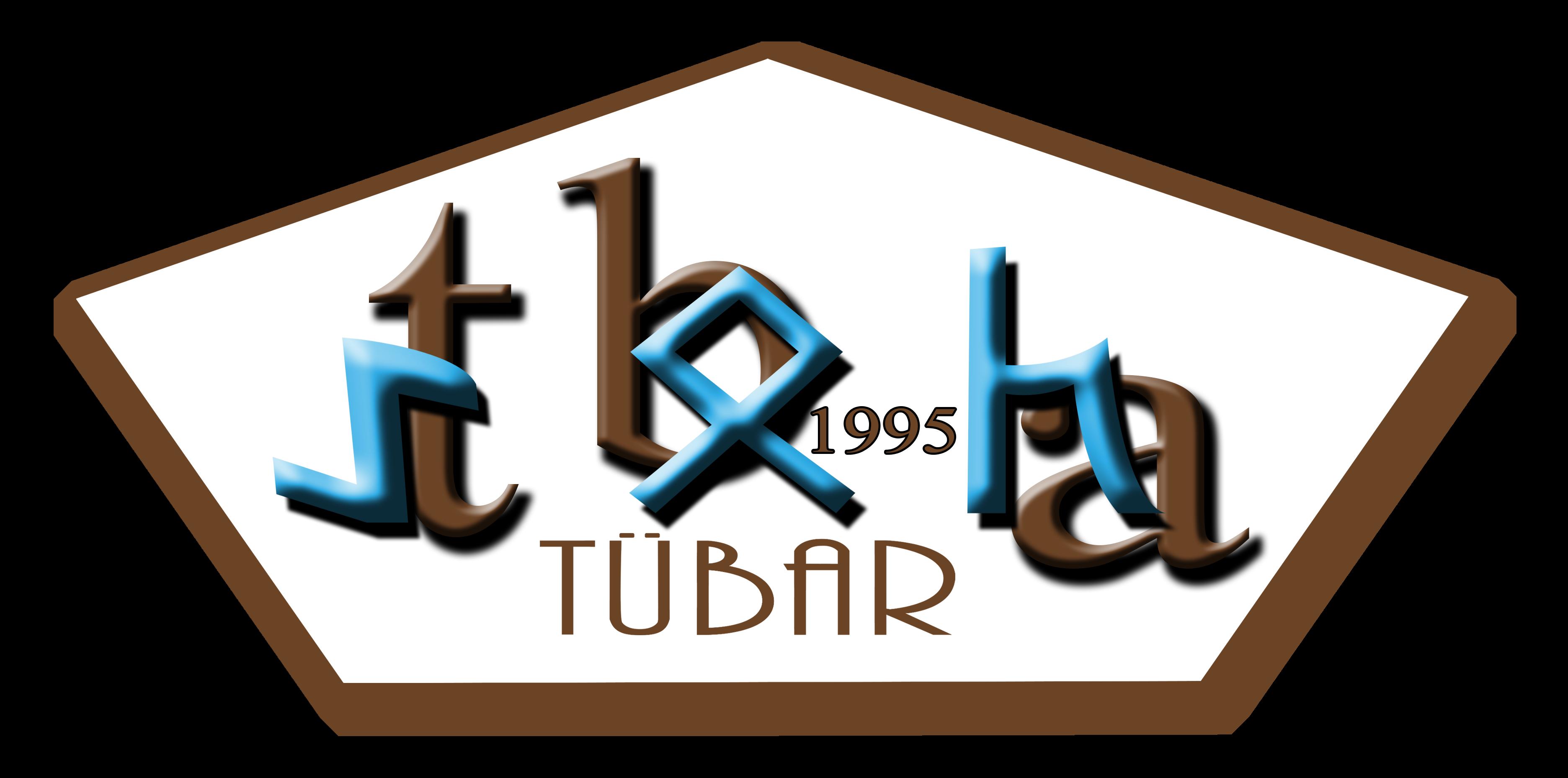 Türklük Bilimi Araştırmaları Dergisi / Journal of Turkology Research